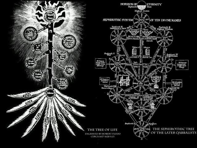 tree_of_life-1